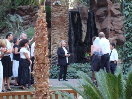 u vrtu hotela Flamingo