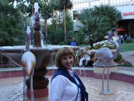 ispred fontane sa umjetnim flamingosima